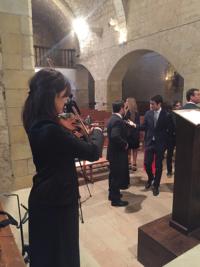 bodes violi classic
